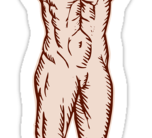 Vitruvian Man Arms Spread Front Etching Sticker
