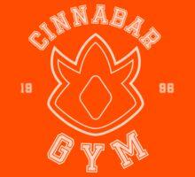 Pokemon - Cinnabar Island Gym by TheBlueOwl