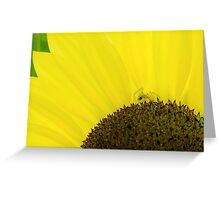 Spider & Sunflower Greeting Card