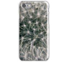 Details of a Dandelion iPhone Case/Skin