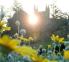 MAGIC HOUR - PORT ARTHUR Tasmania by MrSnapHappy