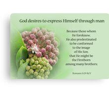 God's Plan ~ Romans 8:29 Canvas Print