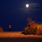 Enjoying the view of the full moon at night by jeanlphotos