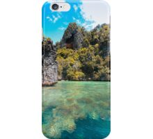 Two Worlds iPhone Case/Skin