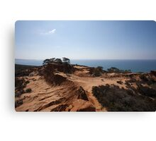 Southern Californian Coast Line Canvas Print