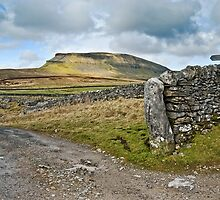 Penyghent, The Yorkshire Dales by Steve  Liptrot
