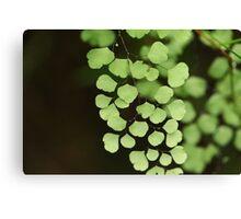 Green Dimension Canvas Print