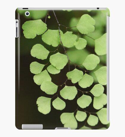 Green Dimension iPad Case/Skin