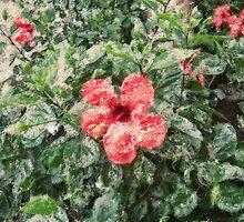 digital painting flower by DavidBlakeway