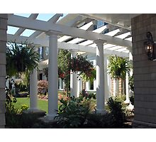 Pergola and hanging baskets Photographic Print