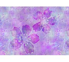 Purple Flowers Photographic Print