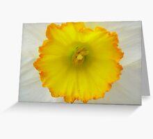 Upclose & Personal Greeting Card