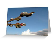 Willow Clouds Greeting Card