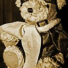 Teddy The Pilot by Evita