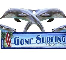 Gone Surfing by WHATYOUWANT