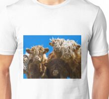 Friendly curious highland cattle Unisex T-Shirt