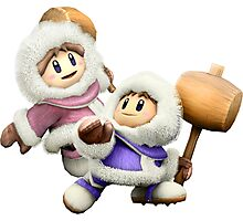 Ice Climbers - Super Smash Bros Photographic Print