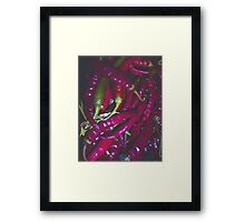 Hot Chilli Framed Print