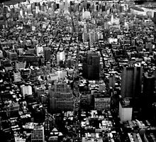 View from the World Trade Centre Twin Towers 1998 by Brian Edwards