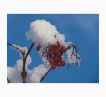 Winter Berries in Snow T-Shirt