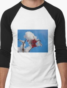 Winter Berries in Snow Men's Baseball ¾ T-Shirt
