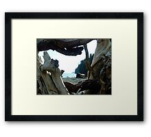 I Came From Out There Framed Print