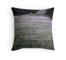 Blanket of Web Throw Pillow