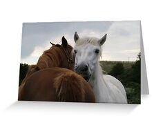 'You Scratch My Back and I'll Scratch Yours' Greeting Card