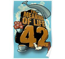 Meaning Of Life = 42 Poster