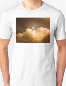 Pegasus ~ Dusk T-Shirt