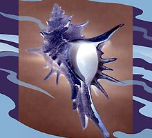 Beautiful Homes - The Spiny Murex by Patricia Howitt