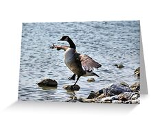"The Karate ""Goose""? Greeting Card"