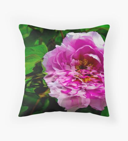 Pure Reflection Throw Pillow