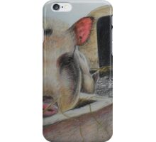 Greedy Pig iPhone Case/Skin