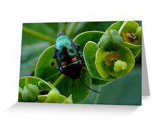photoj  'Bug Tme' Greeting Card