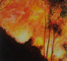 Bushfire I by jp5040