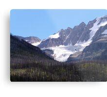 Glaciers and Pine Beetles Metal Print
