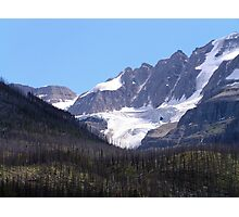 Glaciers and Pine Beetles Photographic Print