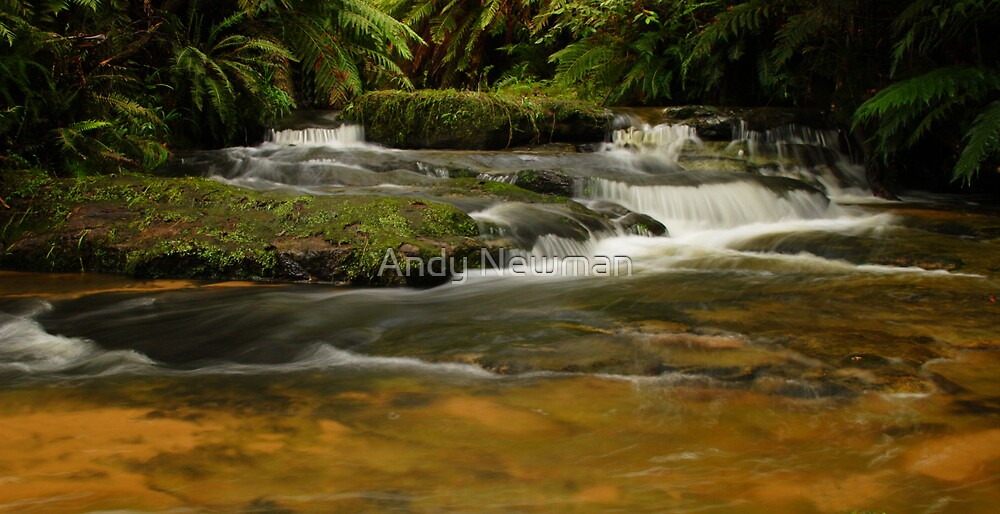 Leura Cascades. by Andy Newman