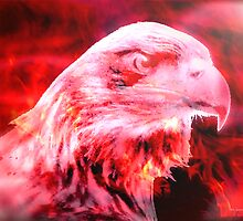 FireBird l by Gail Bridger