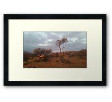 Outback.. Framed Print