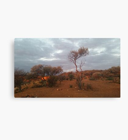 Outback.. Canvas Print