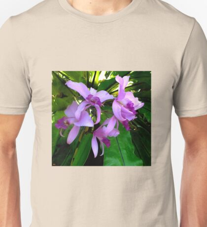 Australian Native Orchids. T-Shirt