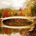 Central Park by Jessica Jenney