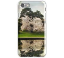 Fountain Reflections iPhone Case/Skin