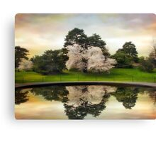 Fountain Reflections Canvas Print