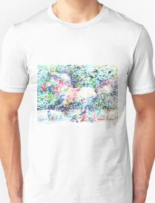 HORSE PAINTING.5 T-Shirt