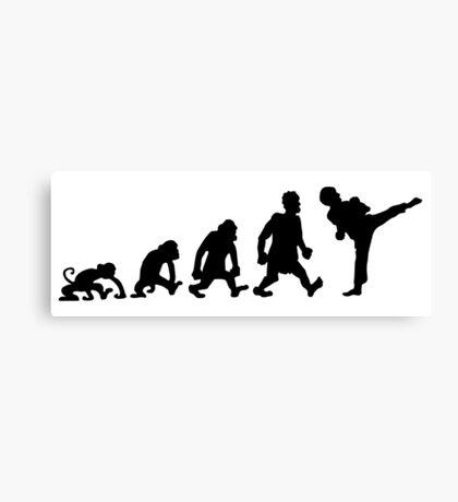 karate  taekwondo evolution darwin Canvas Print