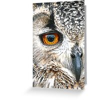 Eagle (Owl) Eye Greeting Card