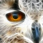 Eagle (Owl) Eye 2 by lisa1970